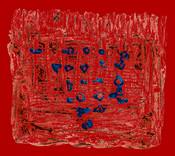 Phoenician Labyrinth (2014)