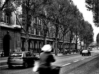 Boulevard du Palais (Paris, 2006)