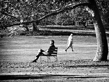 Towards Eden's Meadow (Los Angeles, 1977)
