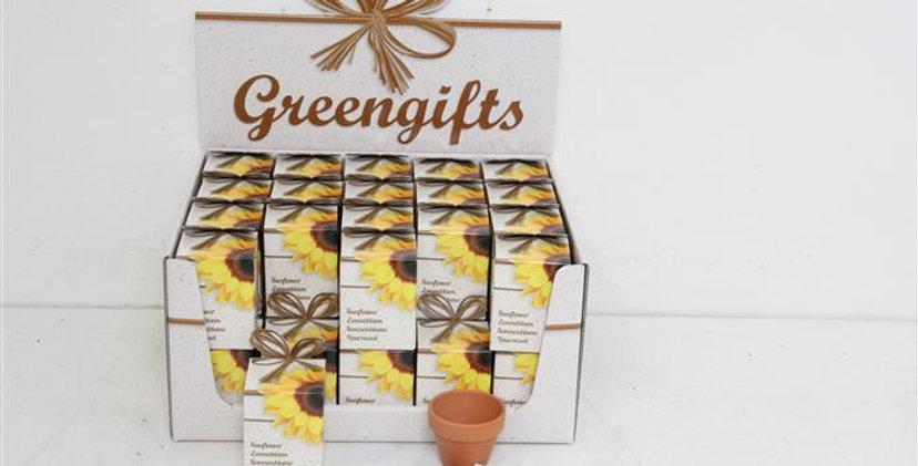 Sunflower Greengift Pack