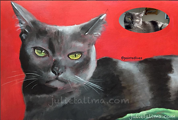custome made pet portrait pop art cat painting