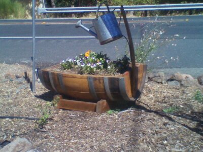 trough planter2