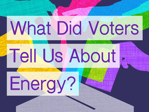 The 2020 Election: What Did the Voters Tell Us About Energy?