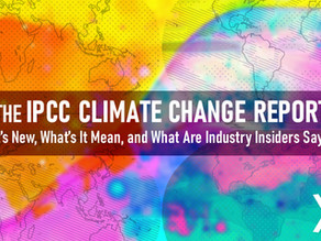 The Recent IPCC Climate Change Report