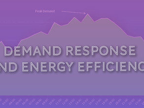 Demand Response and Energy Efficiency - Assets Akin to Generation