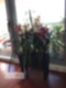 Watermark_ByTailorBrands.jpeg_-_cópia_59