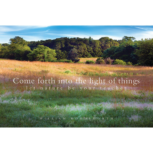 Come forth into the light of things