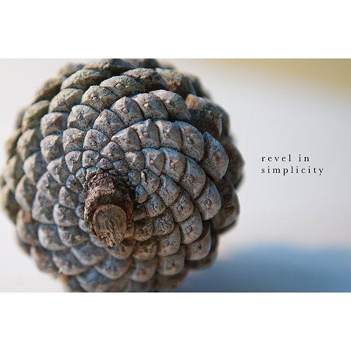Revel in simplicity