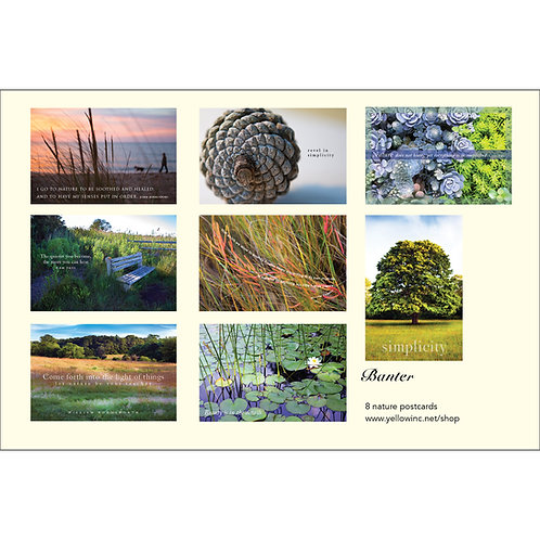 Nature Set of 8 Cards