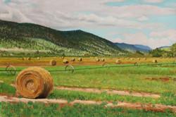 Nicola Lake Hay Ranch