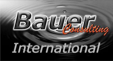 Logo BCI 4.jpg