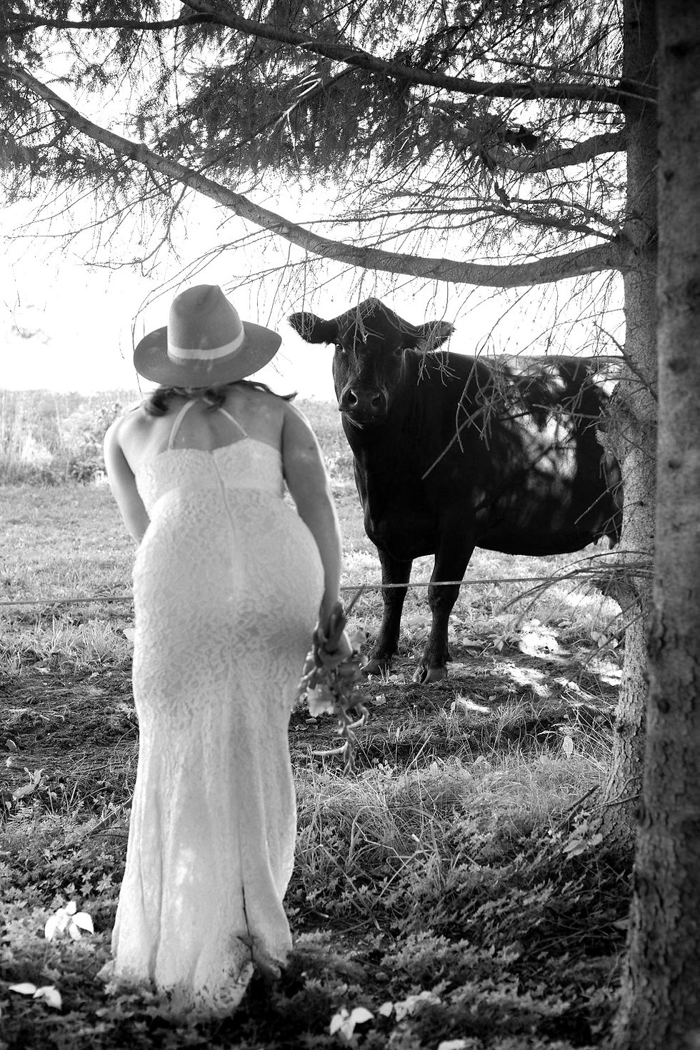 Farm Weddings Elora