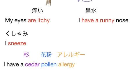 Pollen Season