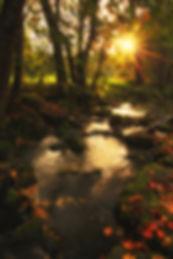 Herbststimmung an der Tauber
