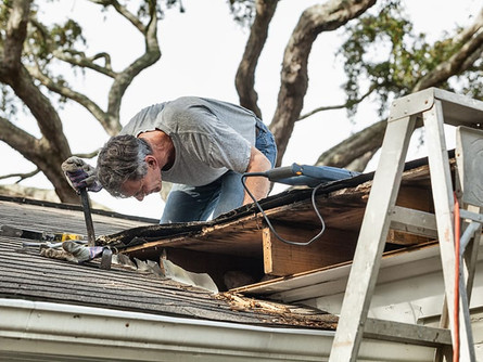 5 Things to Know When You Notice a Roof Leak