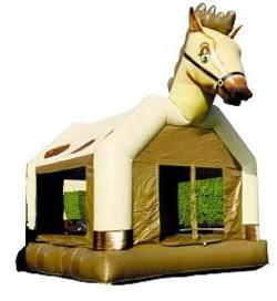 pony-244x266.jpg