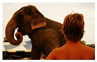 Elefanta_Lady_e_o_menino_do_circo_-_Phot