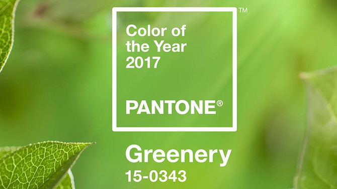 Colors of 2017