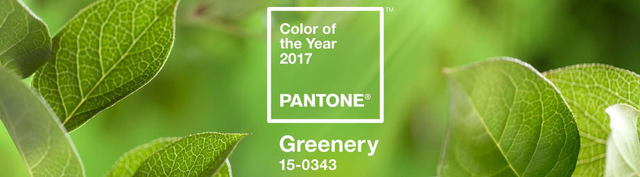 Want To Know Whats Hot For 2017 Interior Design Trends Read This Article About Pantones Color Of The Year And Find Out How Stewart Company Can Help