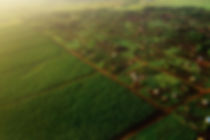 landreformng.jpg