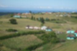 2011-Scattered-homesteads.jpg