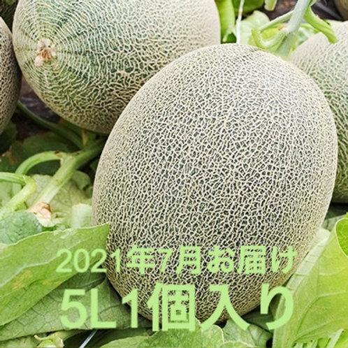 【2021年予約】栄木農園の雲仙グリーンメロン <大玉5Lサイズ>1個入り (送料込・税込)