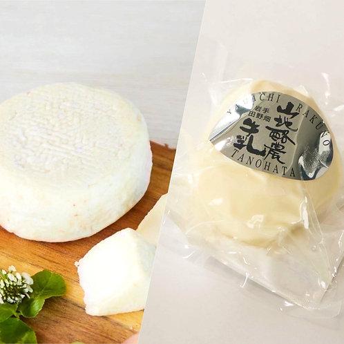 田野畑 山地酪農チーズ2種食べ比べセット(白仙 & 低水分モッツァレラチーズ)(送料込・税込)