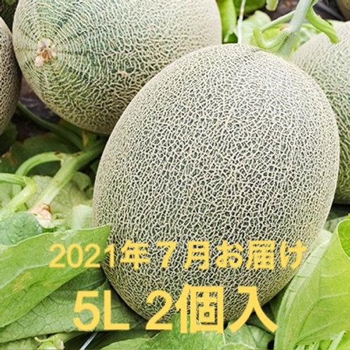 【2021年予約】栄木農園の雲仙グリーンメロン <大玉5Lサイズ>2個入り (送料込・税込)