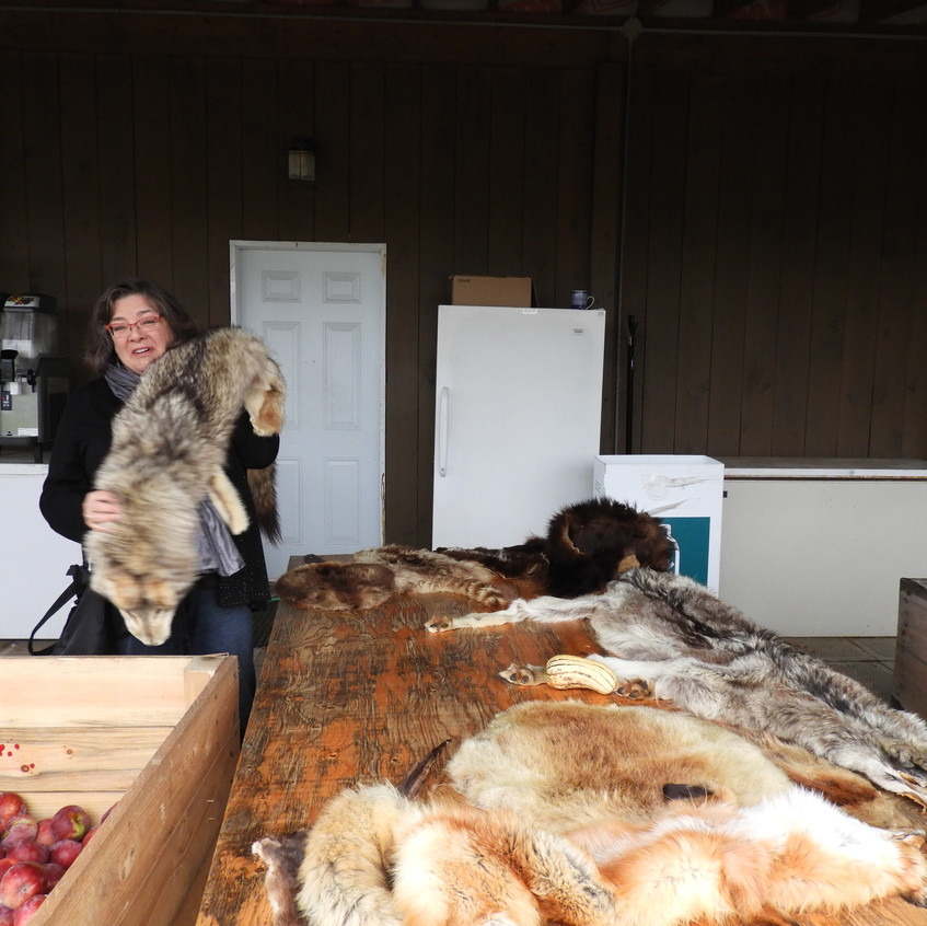 At the Orchard (Barb with pelts)
