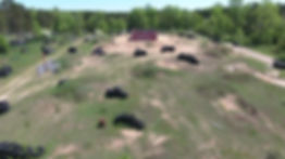 store field 4.jpg