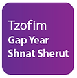 Gap Year shnat sherut button-01.png