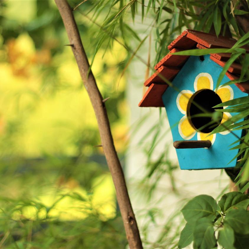 Kid's Workshop: Let's Make a Bird House!
