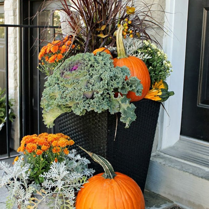 Create Your Own Fall Porch Pot!