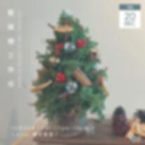 20 Dec Xmas Tree.png