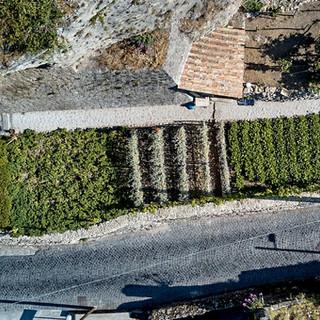 Giardino da droneDJI_0108.jpg