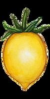 pomodoro giallo gentile.png