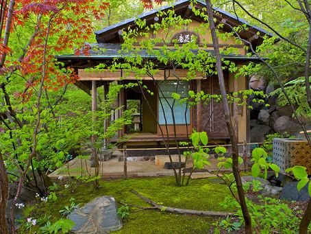 Tea Ceremony @ The Japanese Summer Festival 2016!