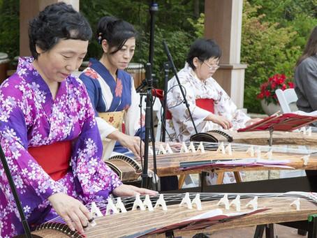 Join Us @ Japanese Summer Festival