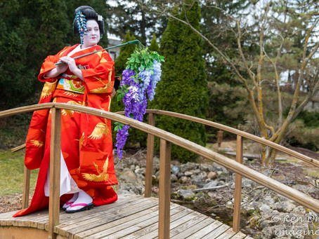 Photos From Kimono Anniversary