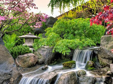 Japanese Summer Festival 2016 @ Andersen Japanese Garden