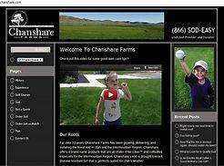 Marketing Spot On Web Design