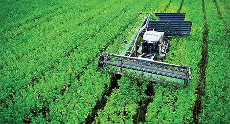 hemp-harvester-hanf-farm.jpg