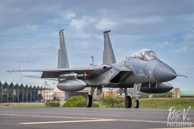 40_F-15C_81-0022_194FS.jpeg
