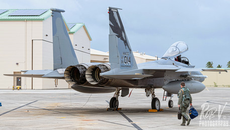 10_F-15C_84-0014_194FS_Stepping.jpg
