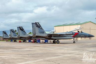 38_F-15C_Eagle Tails.jpg