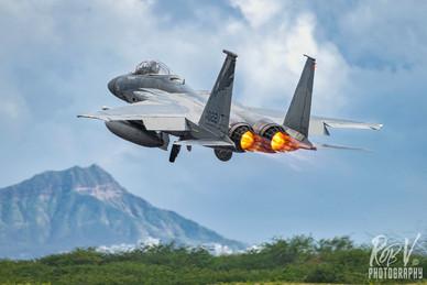 48_F-15C_81-0022_194FS.jpeg