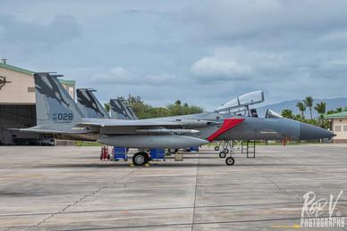 9_F-15C_82-0028_194FS.jpeg