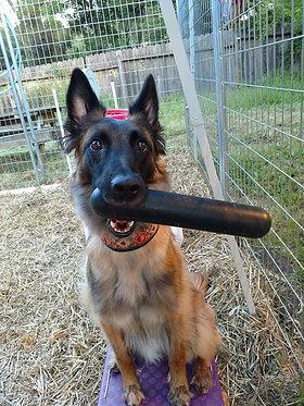 GhoughNut Stick