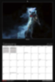 woof-project-malinois-rescue-calendar-ja