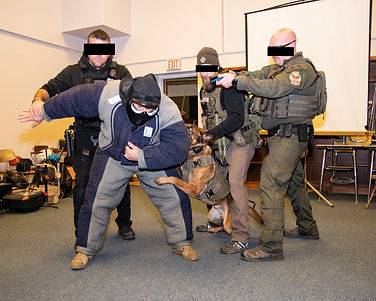 team arrest.jpg